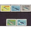 Japan 1955. Fish. Michel no. 642 **/MNH.